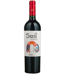 Vin rouge Chili. VIU MANENT Secret Malbec 2015 0,75 L